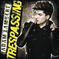 Adam Lambert poster