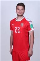 Adem Ljajic poster