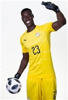 Alfred Gomis poster