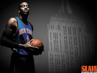 Amare Stoudemire poster