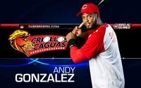 Andy Gonzalez poster