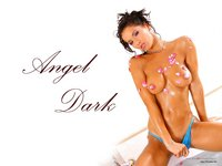 Angel Dark poster