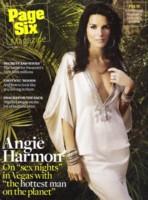 Angie Harmon poster