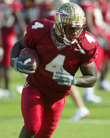 Anquan Boldin poster