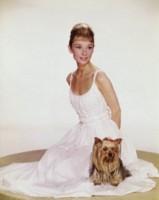Audrey Hepburn poster
