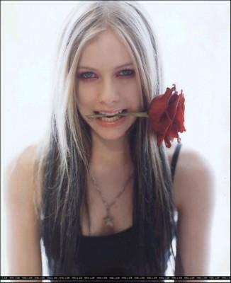 Avril Lavigne poster #1241812