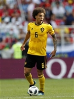 Axel Witsel poster