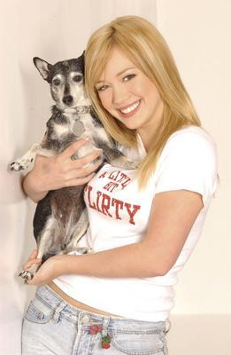 Hilary Duff poster #2050512