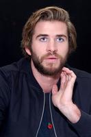 Liam Hemsworth poster