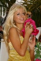 Paris Hilton poster