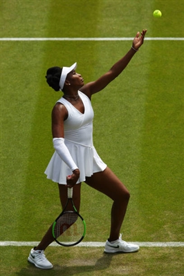 Venus Williams poster