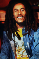 Ziggy Marley poster